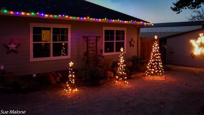 12-01-2020 Christmas Lights Up-18.jpg