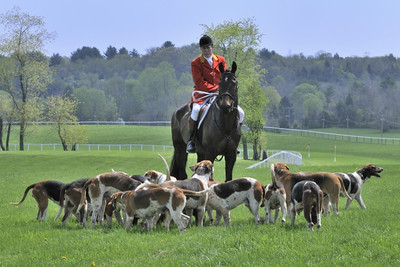 Fairfax Hunt Steepechase