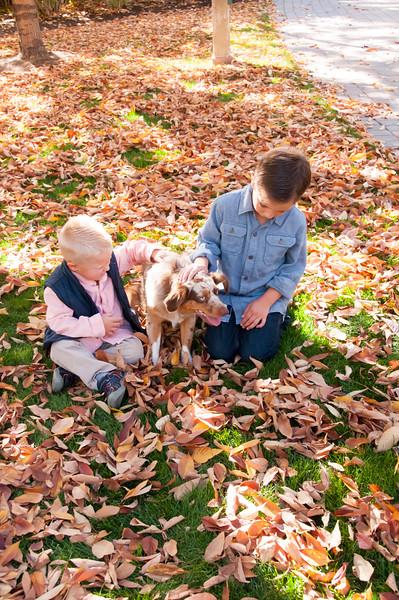 DogDays_Dogs_Gardens_2015_PIC_5849.jpg