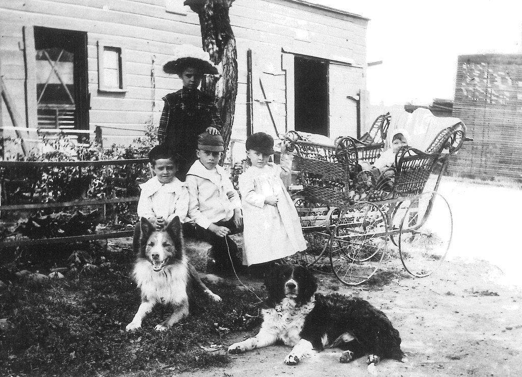 "Description of . The little treasures: Writes HAM of Woodbury (""formerly of West St. Paul""): ""Ran across this picture of some of our father's family when they lived on Third Street in St. Paul, near where Johnson Parkway is now. I believe it was the early 1900s. There were five children then, and four more later. Bottom row on the left was our dad."""