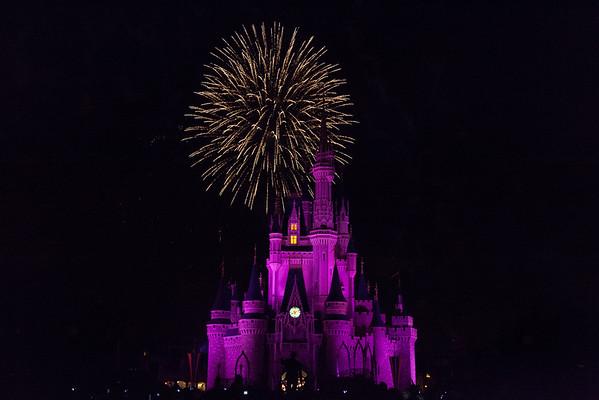 Walt Disney World FL