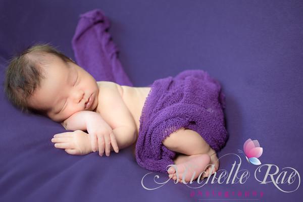 Rich Purple