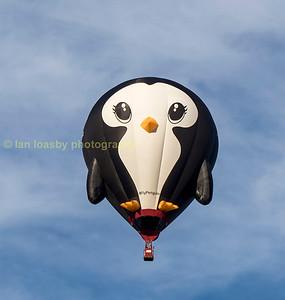Bristol Balloon Festival 2015