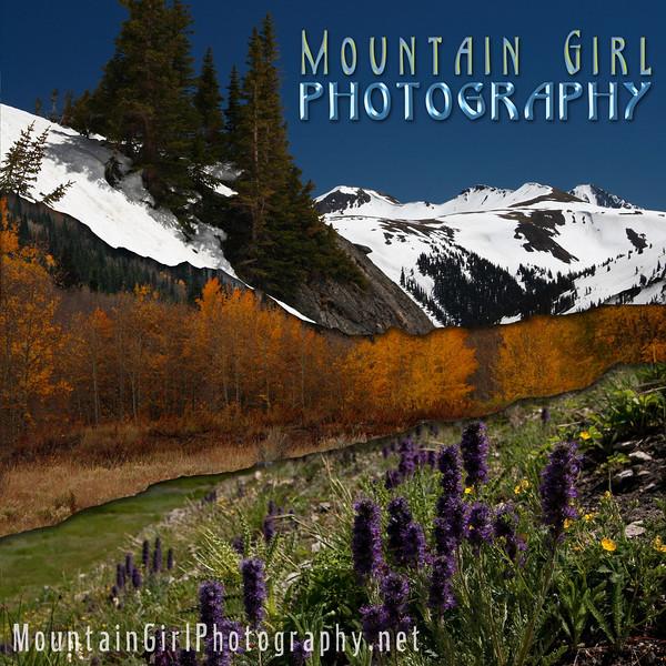 Mountain Girl 3 torn combo square logo copy.jpg