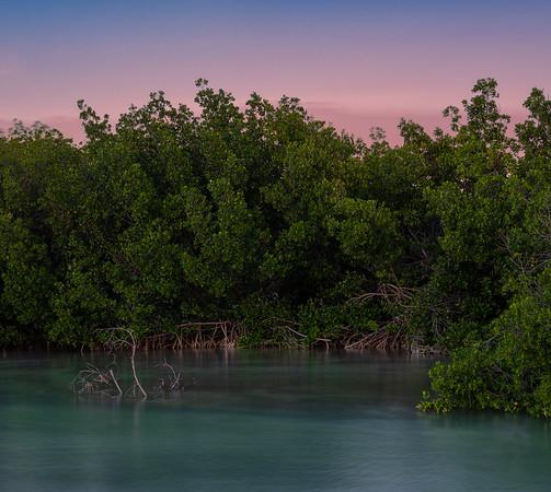 2019 Key West images