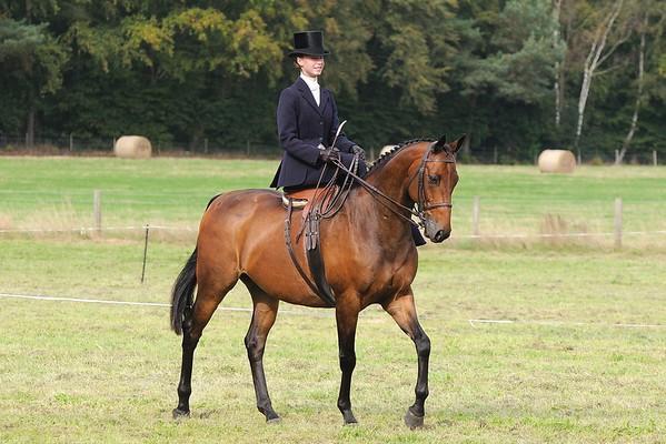 Equestrian (Side Saddle)
