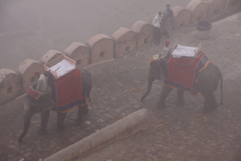 Amber fort in the fog