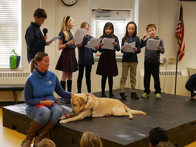 Therapy Dogs Assembly
