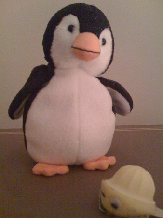 2009 11-27  Penguins