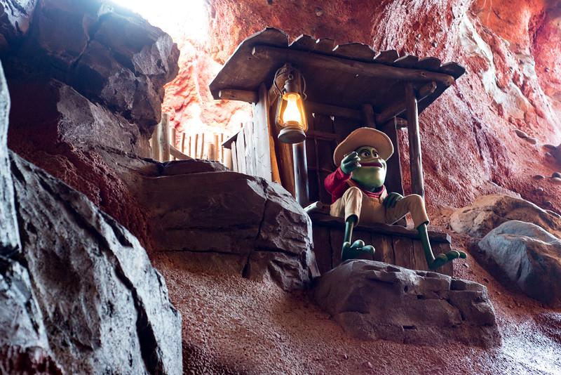 Splash Mountain Scenery - Magic Kingdom Walt Disney World
