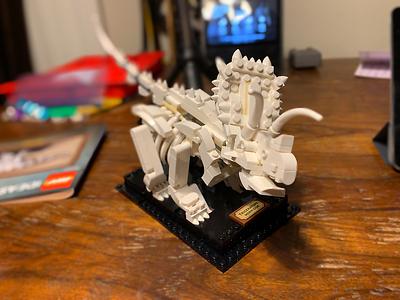 2020-02 LEGO IDEAS Dinosaurs Fossils (21320)