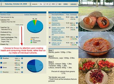 October 2008 - Food Consumption