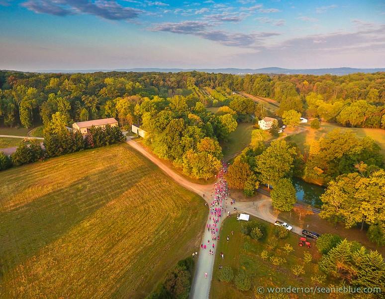 Drone by Sean Divas 1300 40-0250.jpg