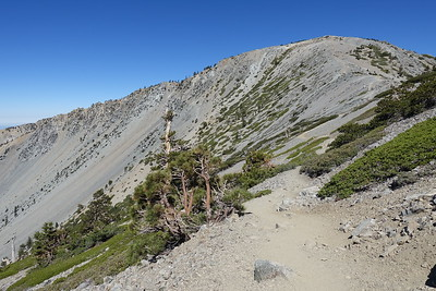 June Mt Baldy