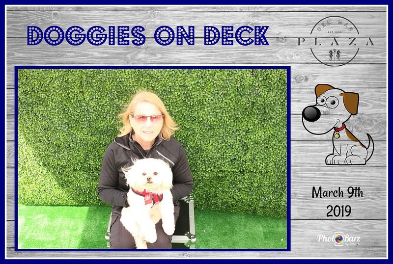 Doggys on Deck18.jpg