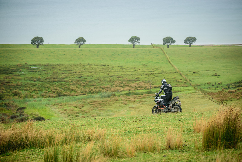 2018 KTM New Zealand Adventure Rallye - Northland (407).jpg