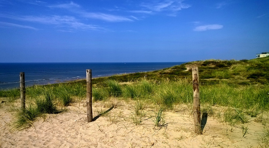 National Park Zuid-Kennemerland - Best Day Trips from Amsterdam