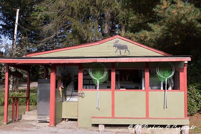 Pine Lake Trout Club 2017