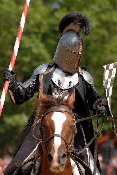 knight 3.jpg