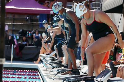 Swim scc best edited