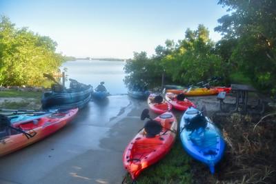9am Mangrove Tunnel kayak Tour - Smith, Forbes, Deliberto, & Martin