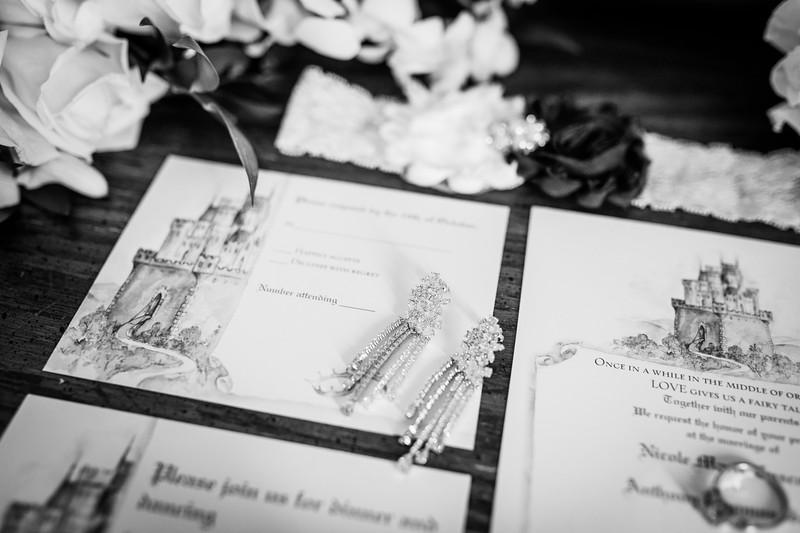 Nicole + Tonys Wedding - Vie - Cescaphe Event Group-007.jpg