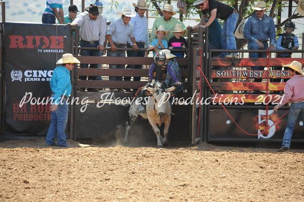 AM 6-9 Bulls