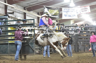 SHORT GO SADDLE BRONC 10-13-2018