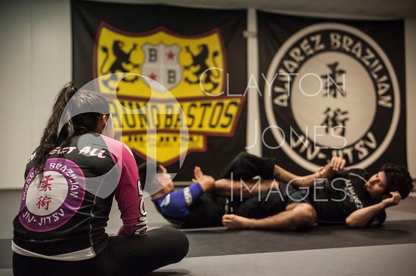 Alvarez Brazilian Jiu-Jitsu, Arlington, TX