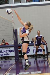 Darlington Volleyball Varsity 2012