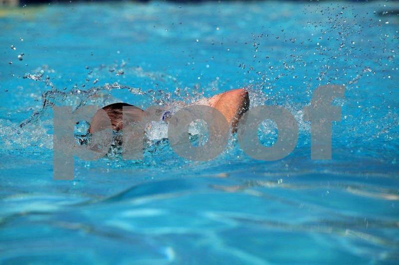 Man BG2 swimming 4359.jpg