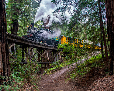Roaring Camp March 2020