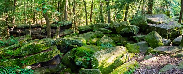 Mill Creek Photo Hike