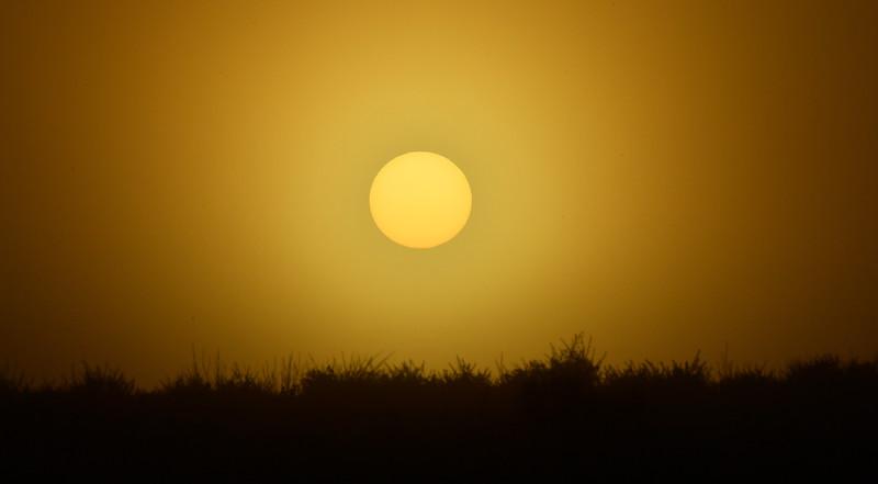 The sun rises through the fog