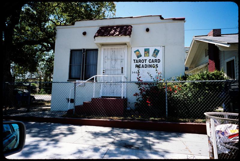 Palmist, Los Angeles, 2005