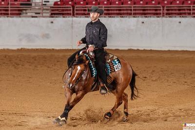 Wednesday Novice Horse Set 20 152-159