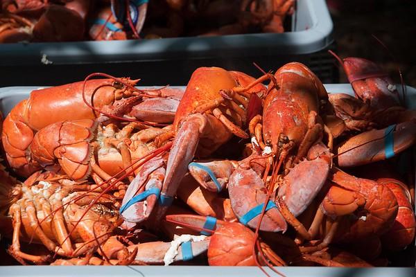 Lobster Fest 2017