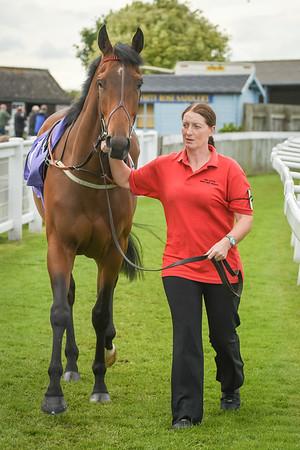 The Thetford Maiden Stakes