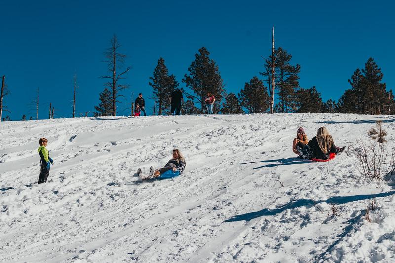 snowMLK-2507.jpg