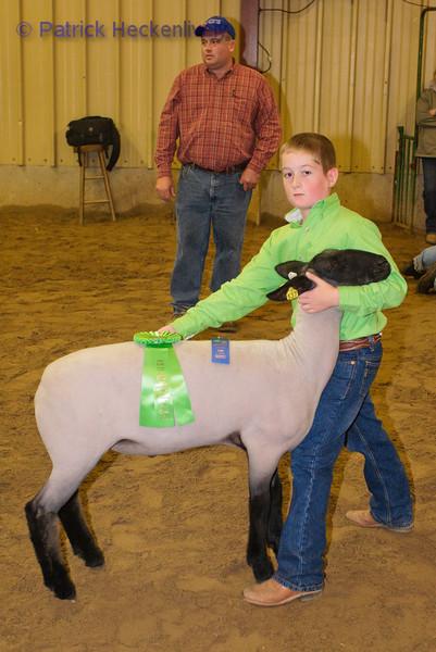 2010-09-27 Sheep 1500-1600