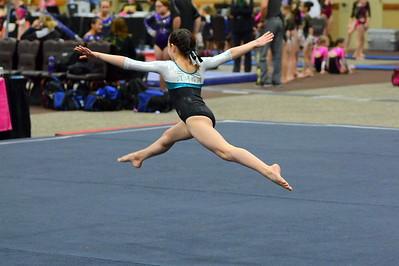 Gymnastics 2015