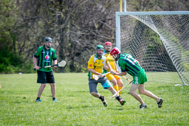 Hurling, AOH St. Charles, Tigin, 2017 (119 of 325).jpg