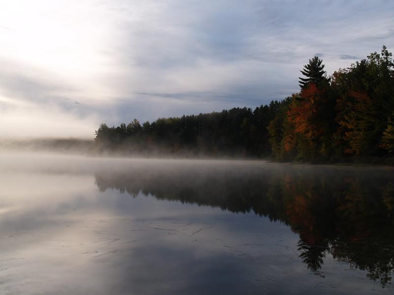 Sun hitting the turning trees on Swan Lake