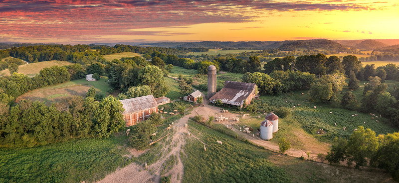 Sunset with farmland and animals