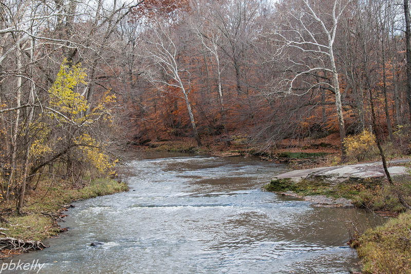 Black River 111013-4.jpg