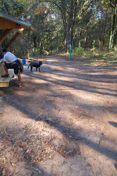 Chuck's East Overlook, new Nov 2008.