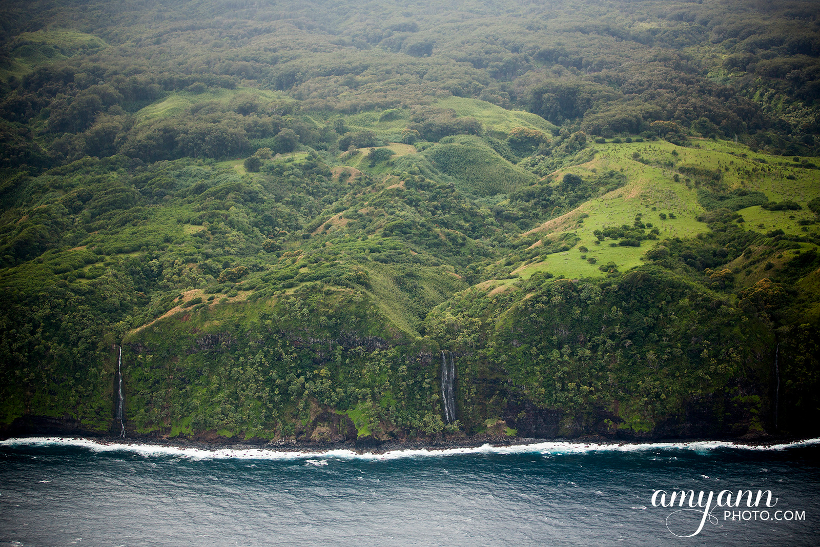 hawaii_amyannphoto_97