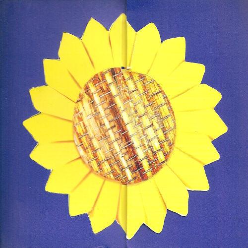 方丽仪 向日葵