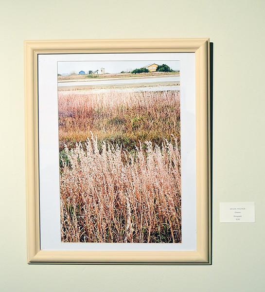 p-Art Center Open House-Artist-in-Residence-Program-Weiner-Grasses-photo_0853.jpg