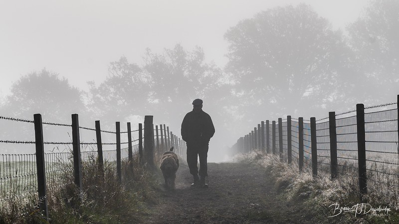 Hassocks in the mist-5439.jpg